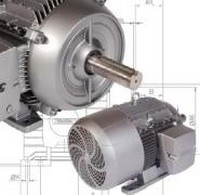 AC Electric Car Motor