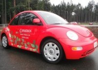 Canadian electric vehicles beetle