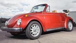 dukes garage bug