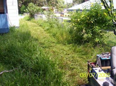 Steve Clunn's Battery Powered Lawn Mower on the Job!