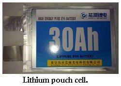 lithium pouch cell