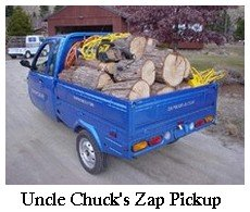 zap electric pickup